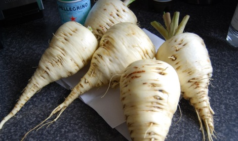 Gladiator parsnips