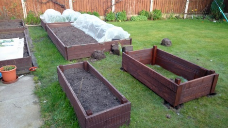 Another raised bed added
