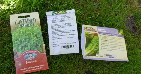 Three lettuce varieties for late sowing
