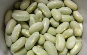 Tiny flageloet beans