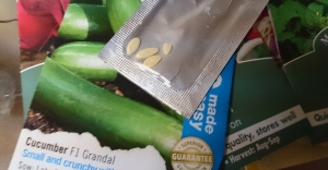 Ungenerous pack of cucumber seeds