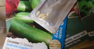 Ungenerous pack of cucumber seeds