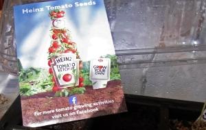 Heinz UK's tomato seeds