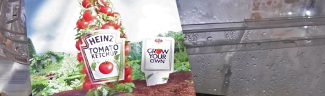Heinz UK's tomato seeds