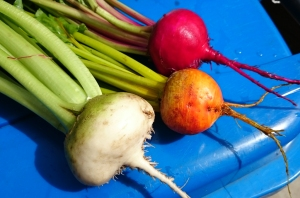 Colourful trio of beetroots
