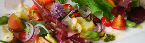 Summer salad colours