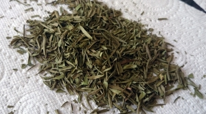 Tarragon, after oven drying