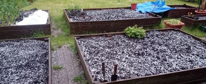 A nice top dressing of hailstones