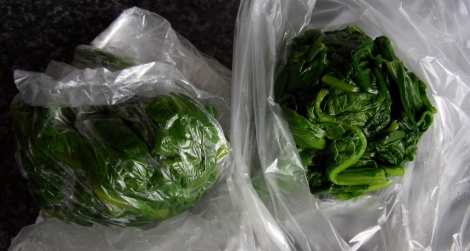 Wilted spinach, ready for freezing