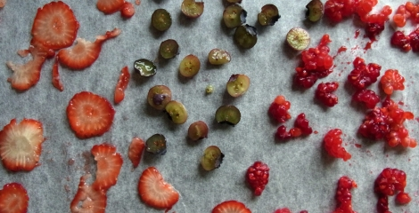 Strawberries, blueberries and raspberries, ready for drying