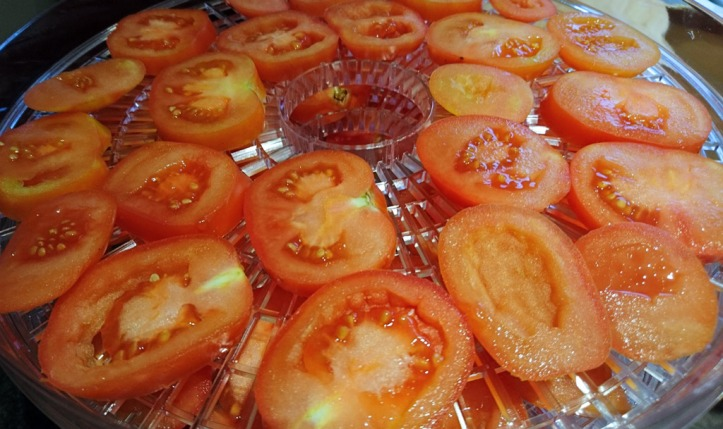 Before: tomatoes thickly sliced and laid out on the drying racks.