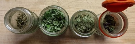 Dried Rosemary, Oregano, Thyme and Basil (green and purple)