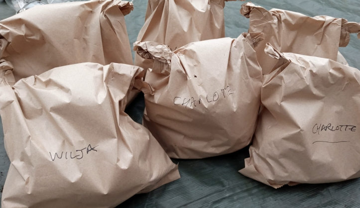 All bagged up for storing