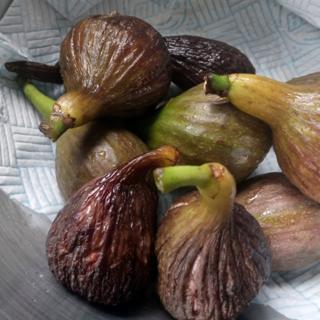 Jammy, freshly-picked figs