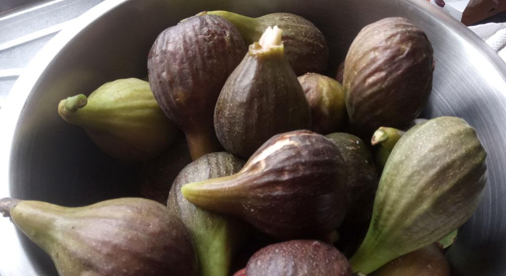 Fig jam raw materials